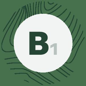 bio spirulina - spirulina b1