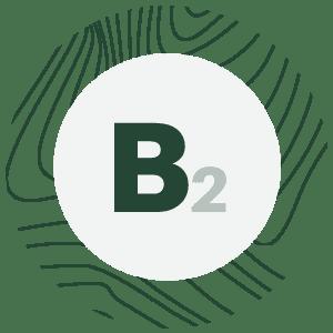 bio spirulina - spirulina b2