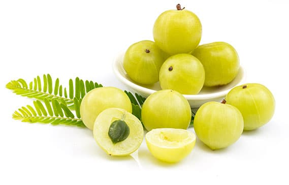 Digestion Complex - indian gooseberry