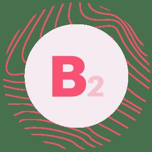 Beauty Complex - beauty b2