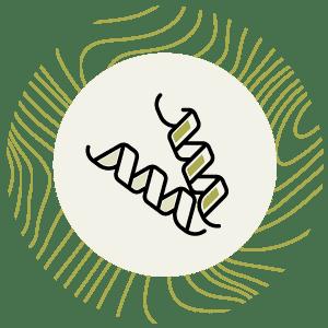 Smart Complex - smart protein